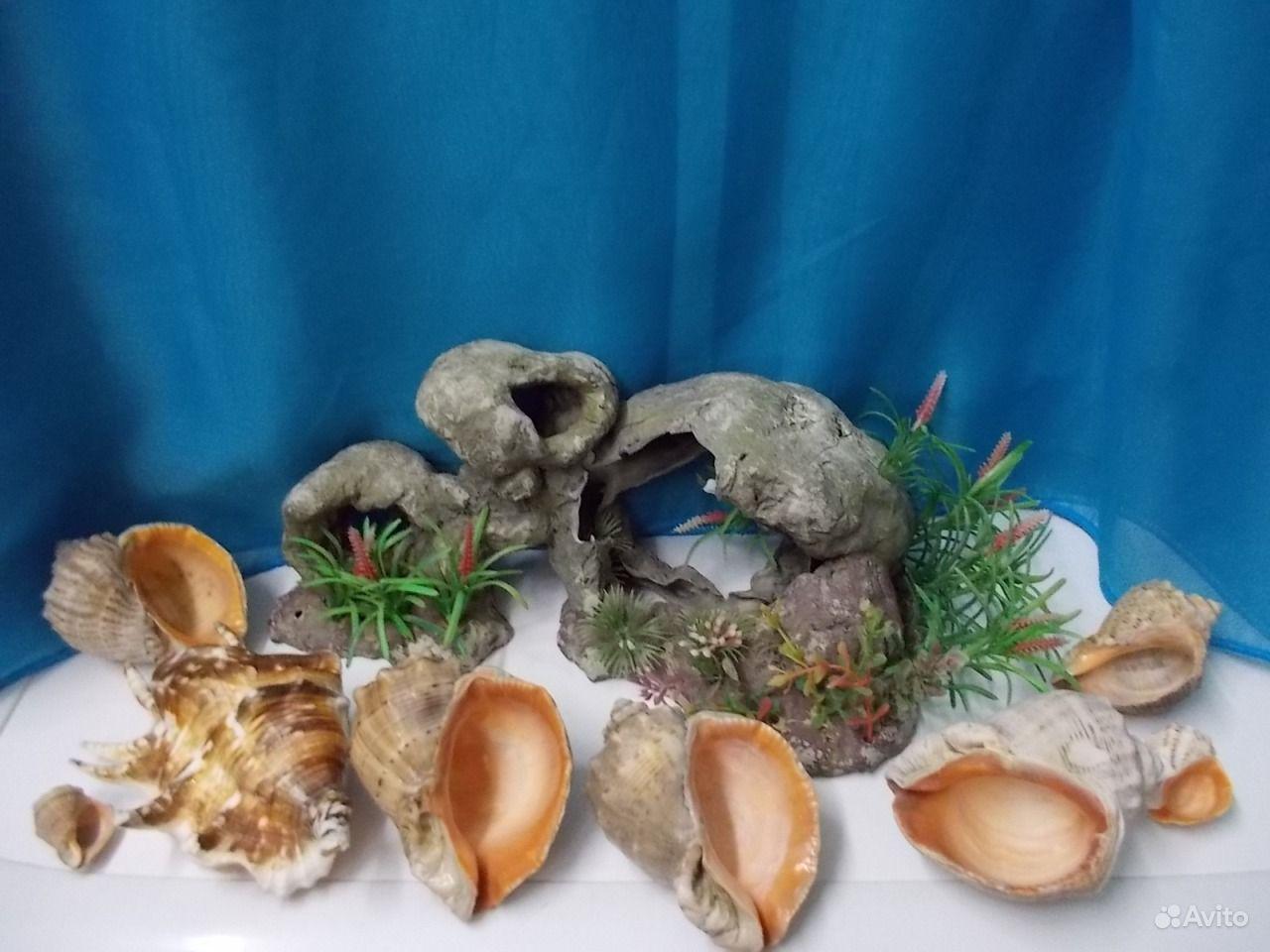 Грот для аквариума, ракушки