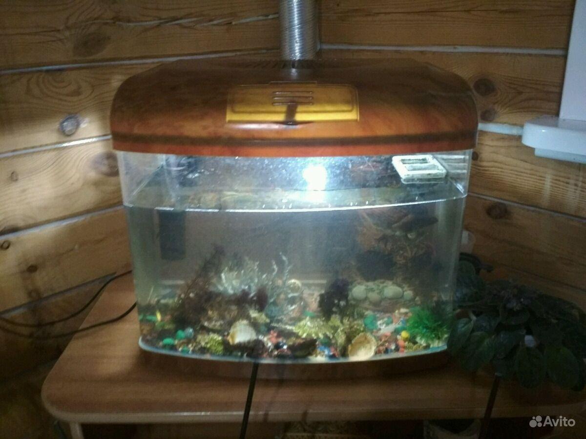 Продам аквариум 48л с рыбками 3 есть г ка