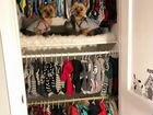 Пошив одежды для животных