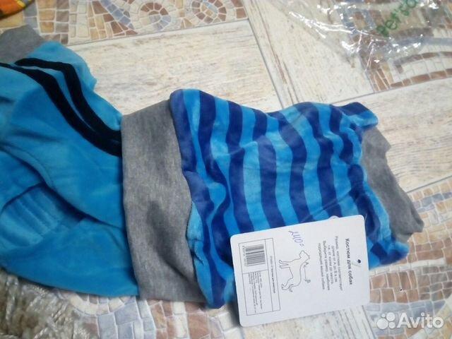 Одежда для четвероногих друзей  89623788605 купить 8