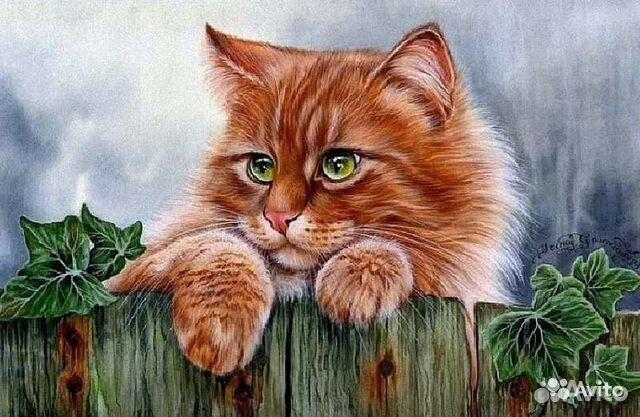 """Раскраска по номерам """"Рыжий кот"""", рама, 50*40 купить в ..."""