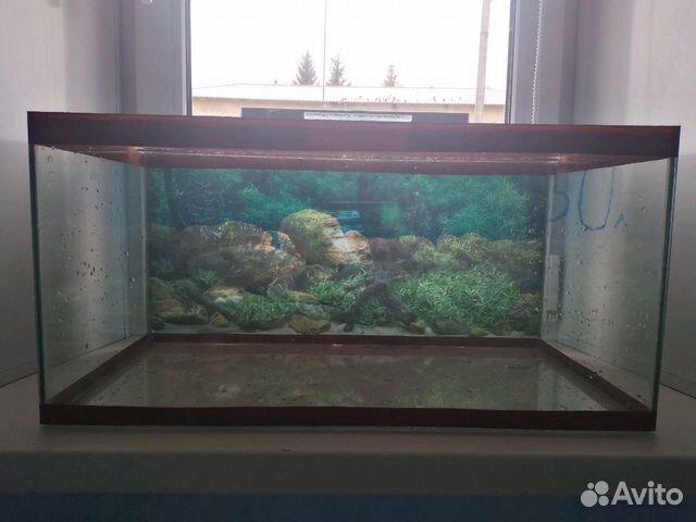 Aquarium 89103112387 buy 4