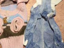 Одежда для чихуа