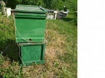 Продам рой пчёл